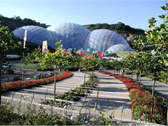 A view of The Eden Project's geodesic domes across an outdoor display of plants.